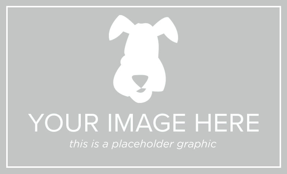dog-placeholder